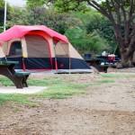 キャンプ場の区画サイトとフリーサイトの違いとは?